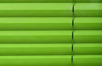 Grünes Plissee Sichtschutz